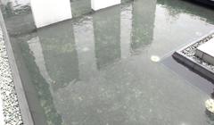 川や池などに油が流出